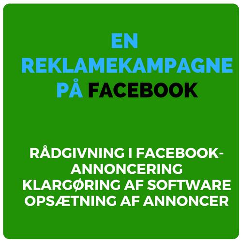 Rådgivning og teknisk opsætning af en reklamekampagne på Facebook Image